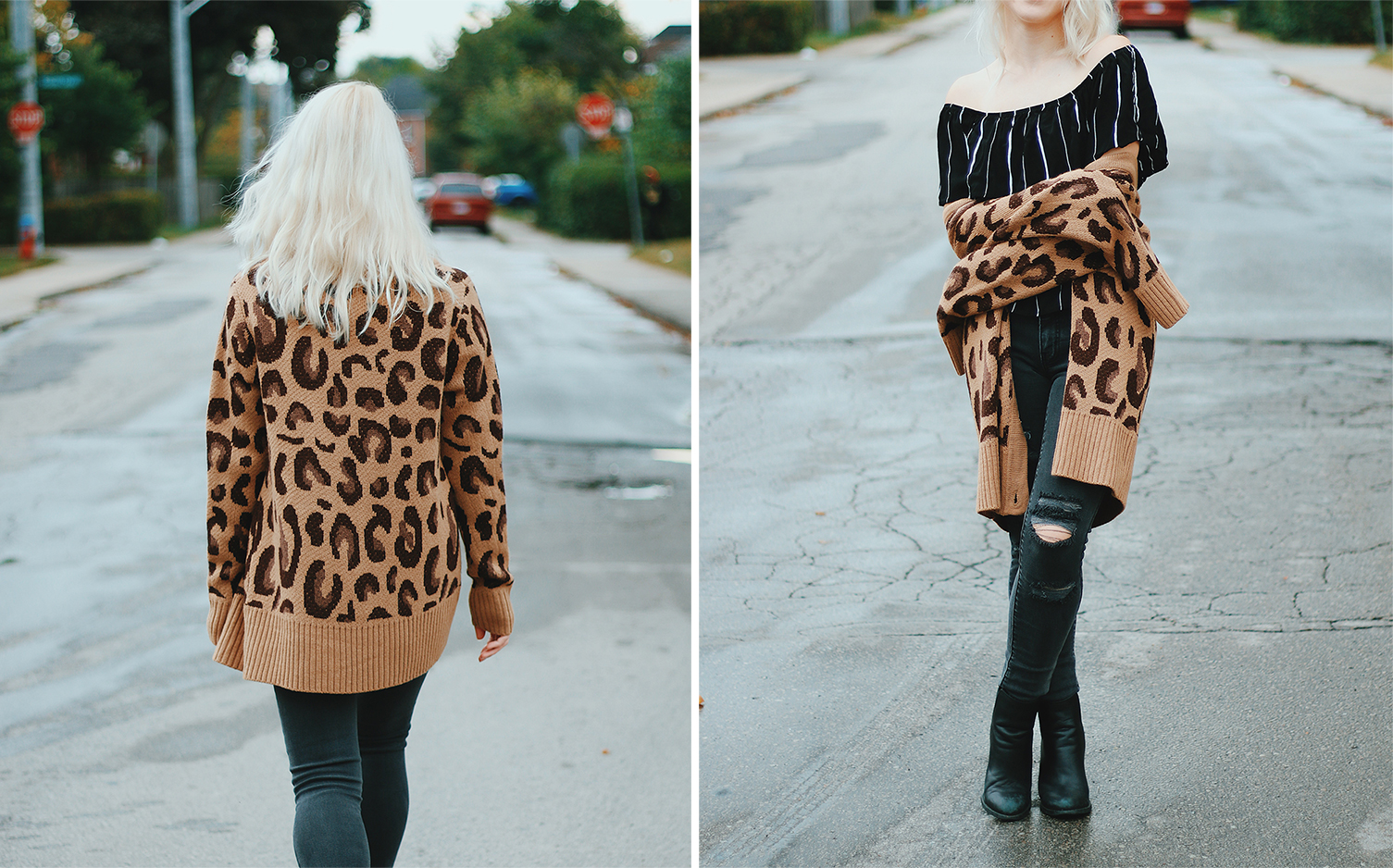 shop tobi leopard print and stripes