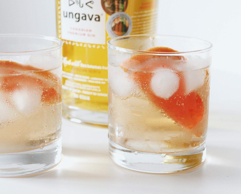 ungava gin cocktail recipe